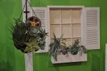 Window Box and Hanging Basket at 2014 Philadelphia Flower Show
