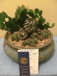 Bill's Dover Flower Show entries 2014 006