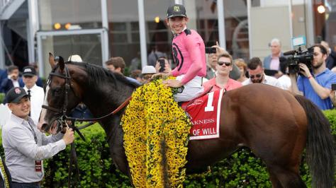 War-of-Will-Preakness-win